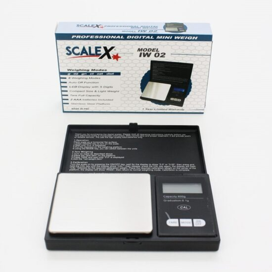 Scale X Model Iw02